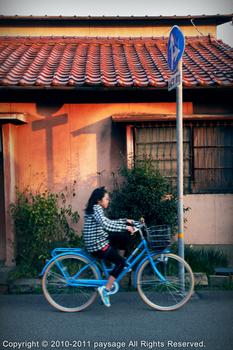 青い自転車.jpg