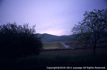 rainy-miki00.jpg